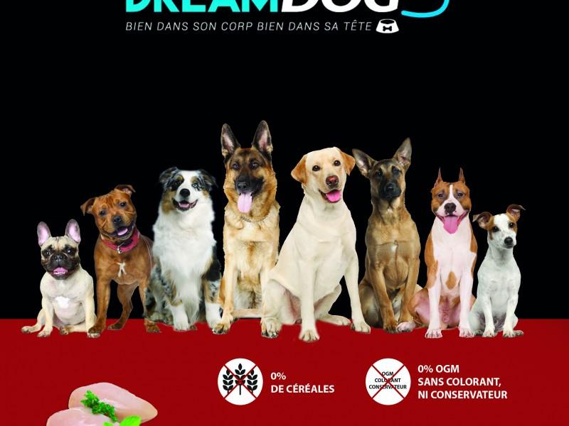 Croquettes Dream Dog